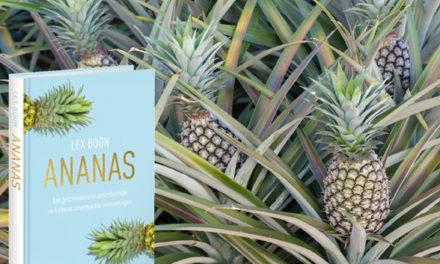 Fascinerende wereld van de ananas
